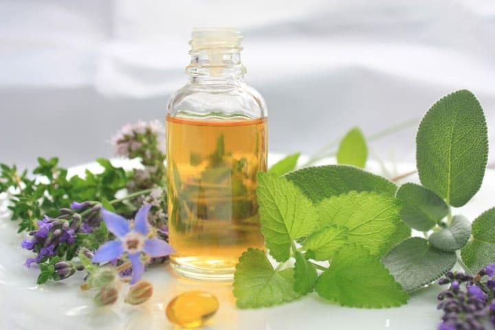 oregano-oil-candida-important