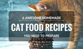 homemade-cat-food-recipes-cover