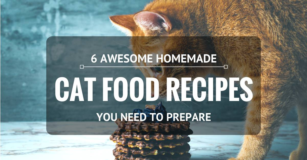 6 Awesome Homemade Cat Food Recipes That You Need To Prepare