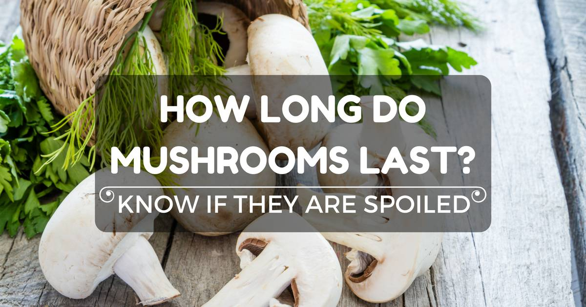 How Long Do Mushrooms Last? Know If They Are Spoiled